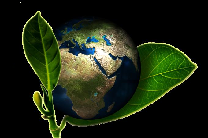 Eltete TPM zielony świat